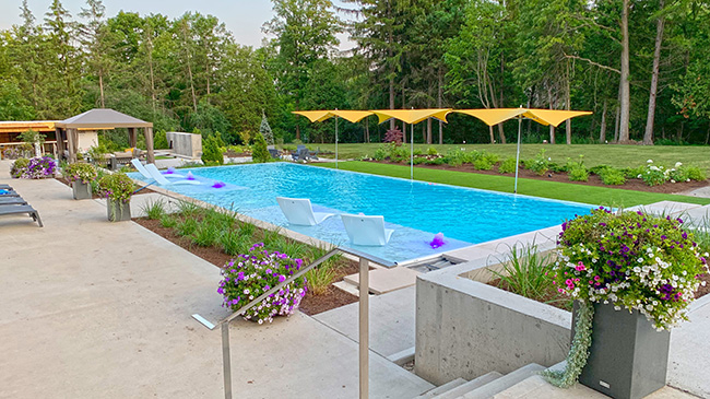 Backyard pool at a private residence in Kitchener, Ontario